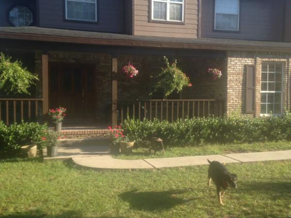 Housesitting assignment in Crystal River, FL, United States