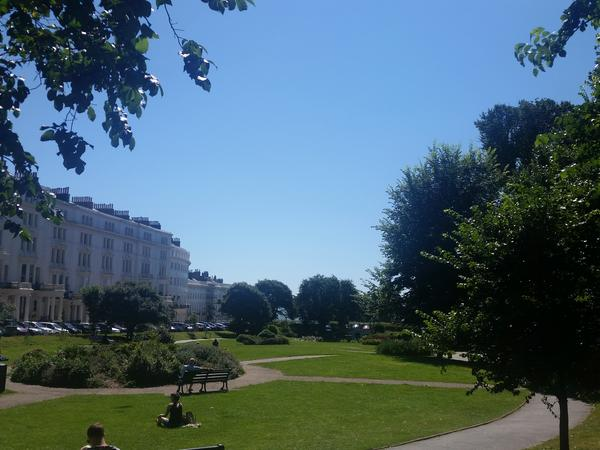 House and pet sitter required in Brighton