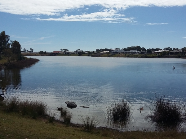 Pet and House Sitting in beautiful Hervey Bay
