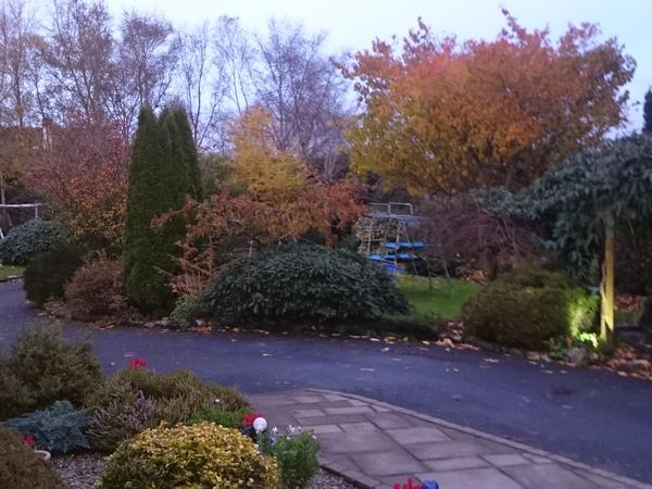 Housesitting assignment in Clarinbridge, Ireland