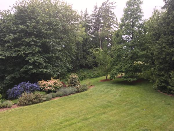 Housesitting assignment in Ferndale, Washington, United States