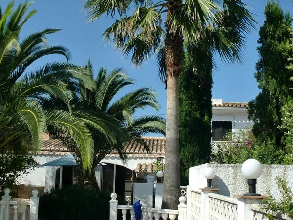 Housesitting assignment in Orba, Spain