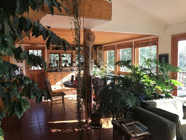 Housesitting assignment in Nederland, Colorado, United States