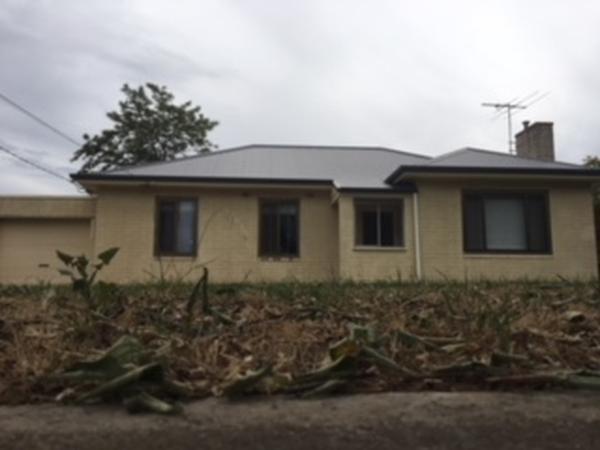 Housesitting assignment in Warradale, South Australia, Australia