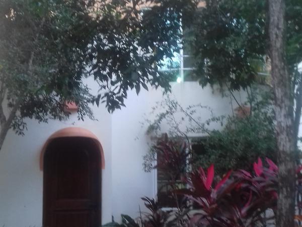 Housesitting assignment in Tulum, Mexico
