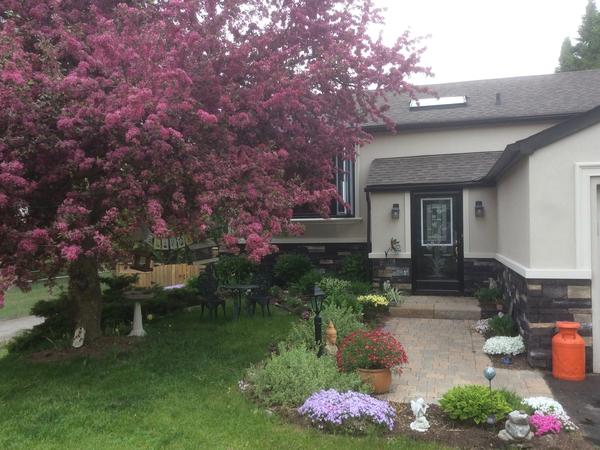 Housesitting assignment in Caledon East, Ontario, Canada