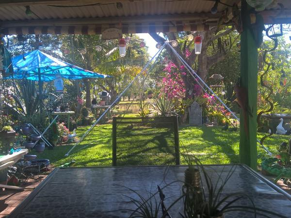 Housesitting assignment in Saint Lawrence, QLD, Australia