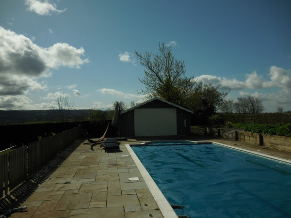 Pet sitter needed in beautiful rural Somerset, fab views and pool, for my 3 Labradors from 2nd to 9th July