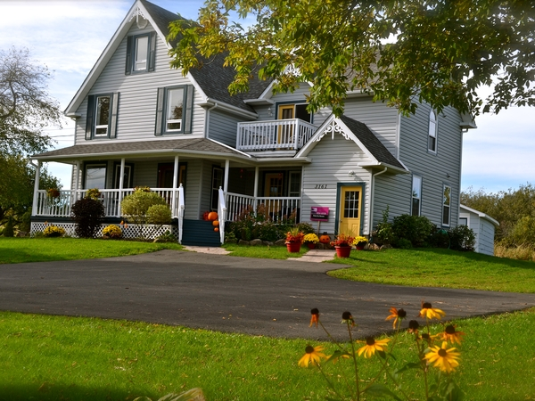 Housesitting assignment in Moncton, New Brunswick, Canada