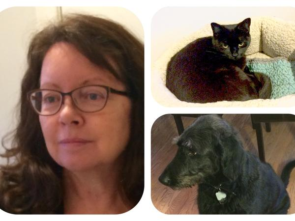 Catherine (kate) from Welland, ON, Canada