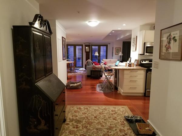 Housesitting assignment in Philadelphia, Pennsylvania, United States