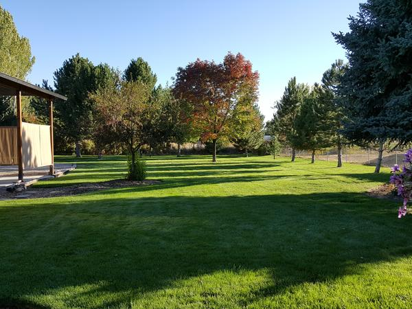 Housesitting assignment in Boise, ID, United States
