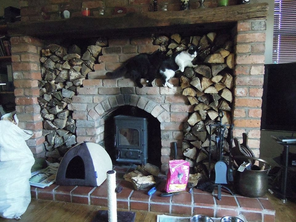 Cosy country cottage nr Chester. Cat sitter needed