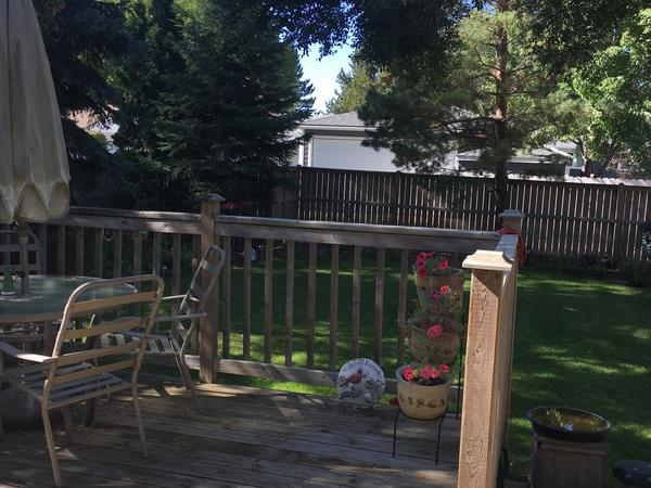Housesitting assignment in Saskatoon, Saskatchewan, Canada