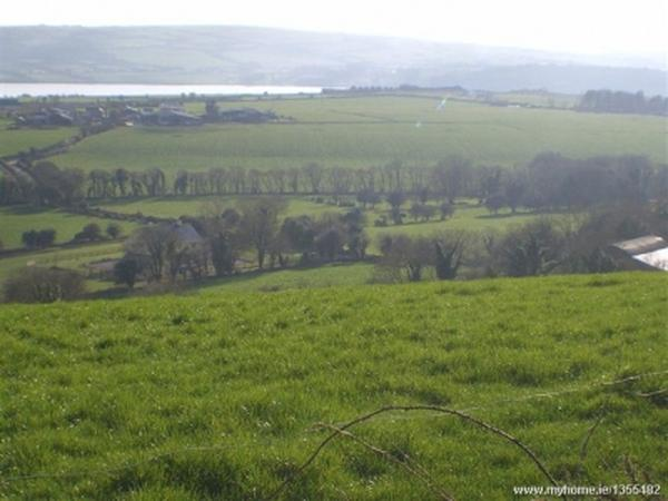 Pet sitter needed for lovely country home in the South of Ireland