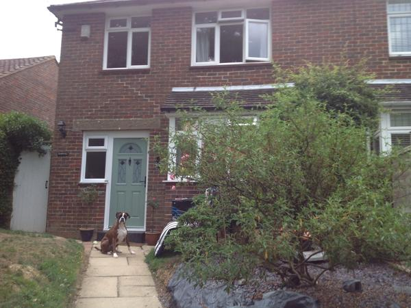 Housesitting assignment in Dorking, United Kingdom