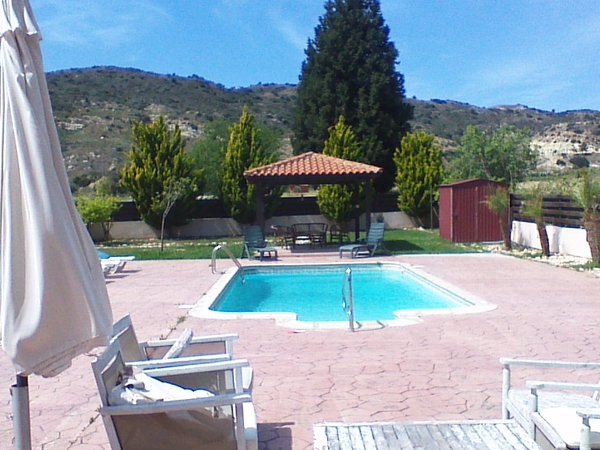 4 lovley dogs in a beautiful house with pool in pissouri village Cyprus.