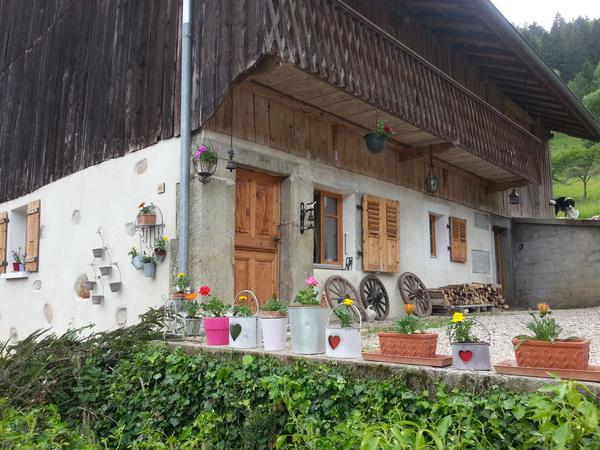 Housesitting assignment in Lullin, France