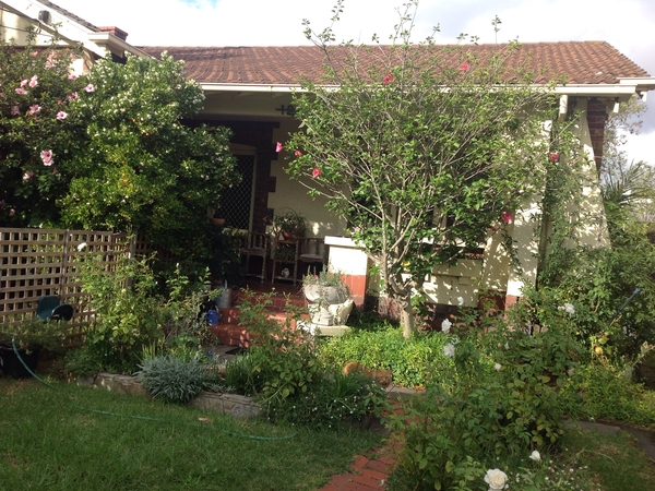 Pet and house sitter, 3 bedroom house and garden