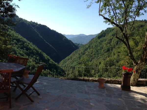 Pet sitters needed for 3 cats in Tuscany