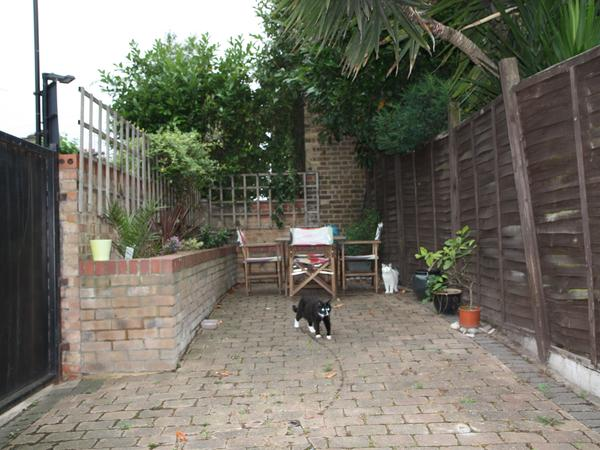 East London with garden and two extremely friendly cats