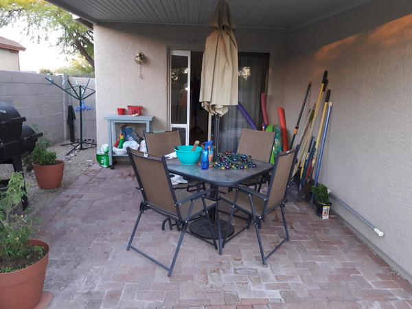 Housesitting assignment in Tucson, AZ, United States