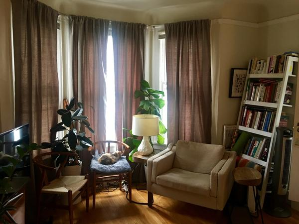 Housesitting assignment in San Francisco, CA, United States