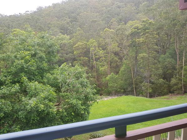 Housesitting assignment in Bonogin, Queensland, Australia