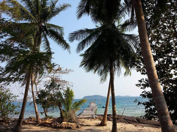 Looking for two animals'and beach life style lovers to look after nomad, deng and bikini from December 15th 2017 to January 20th 2018 (we can talk about dates) on a beautiful secluded island off the grid on the amazing coast of Cambodia