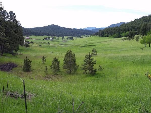Evergreen Mountain Horse Property