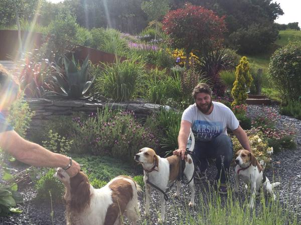 Housesitting assignment in Schull, Ireland