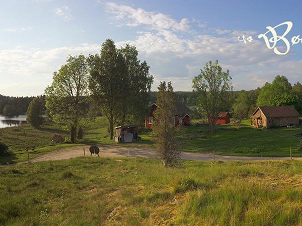 Housesitting assignment in Halden, Norway