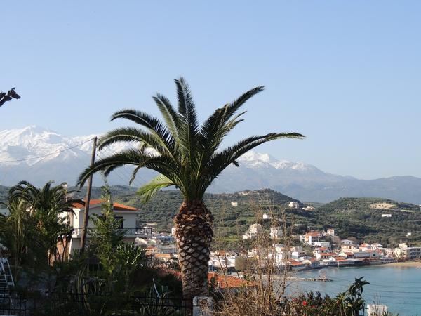 Housesitting assignment in Almyrida, Greece