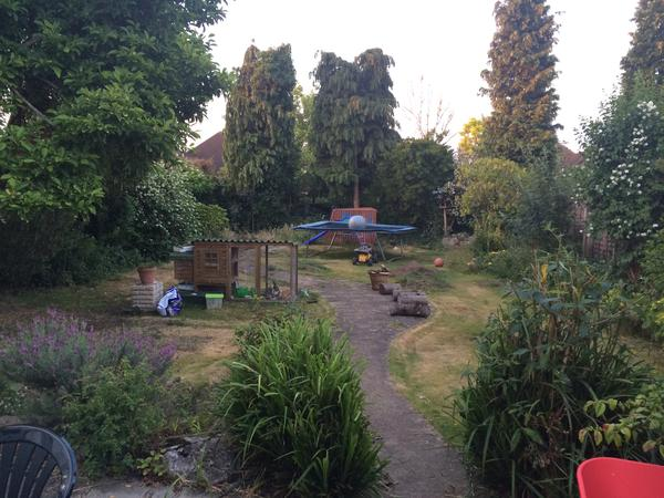 House sitters needed for house in Surrey for August 2015