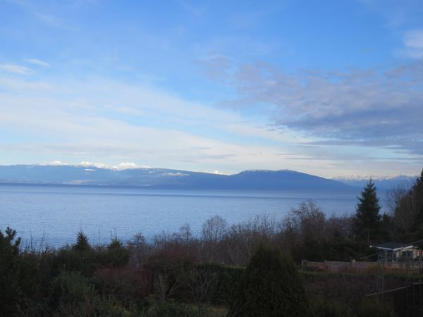 Housesitting assignment in Nanaimo, British Columbia, Canada