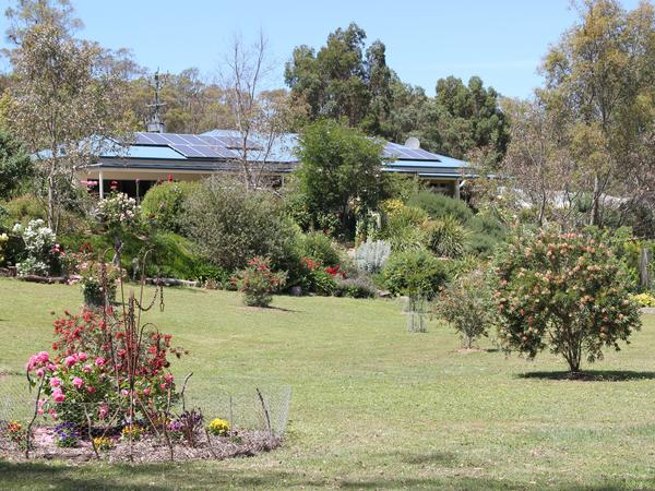 Housesitting assignment in Castlemaine, Victoria, Australia