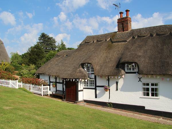 Thatched cottage in ideal location, with 2 calm whippets
