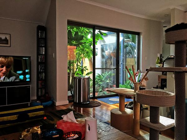 Housesitting assignment in Windsor, Victoria, Australia