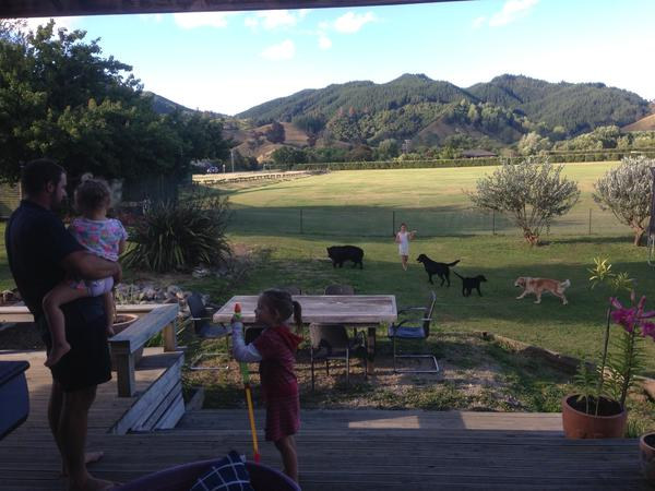 Housesitting assignment in Riwaka, New Zealand
