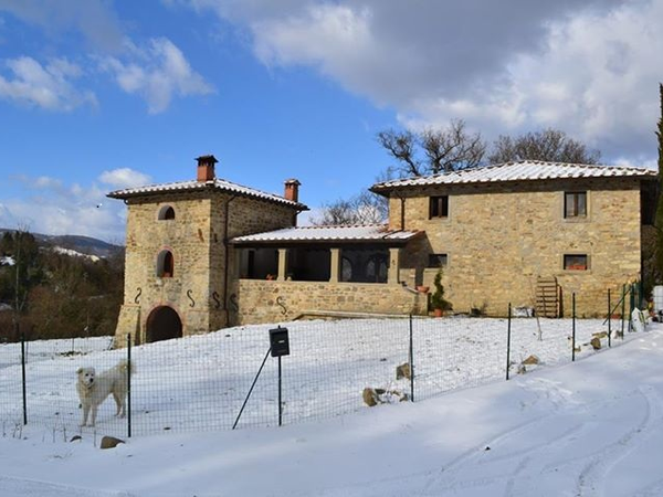 STILL LOOKING! 15 acres in the beautiful Casentino Valley, Tuscany in Italy. Looking for a  practical British/European couple with farm animal experience. PRIMARY REASON for coming is to look after the animals NOT for sightseeing.