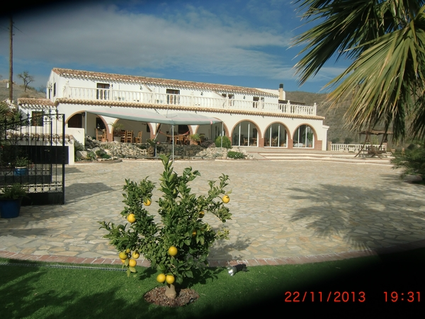 Housesitting assignment in Taberno, Spain