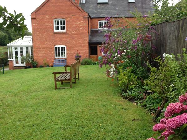 1 Month housesit in the beautiful Somerset countryside caring for 3 loving pets.
