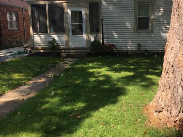 Housesitting assignment in Indianapolis, Indiana, United States