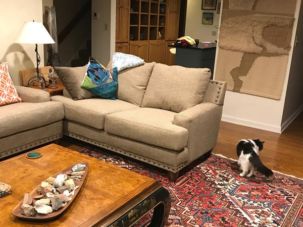 Housesitting assignment in Erie, Pennsylvania, United States