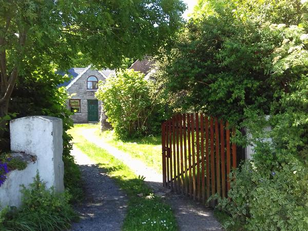 Housesitting assignment in Gort, Ireland