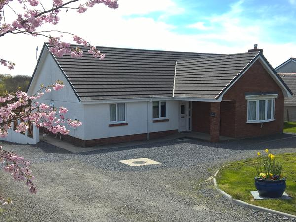 Housesitting assignment in Capel Hendre, United Kingdom