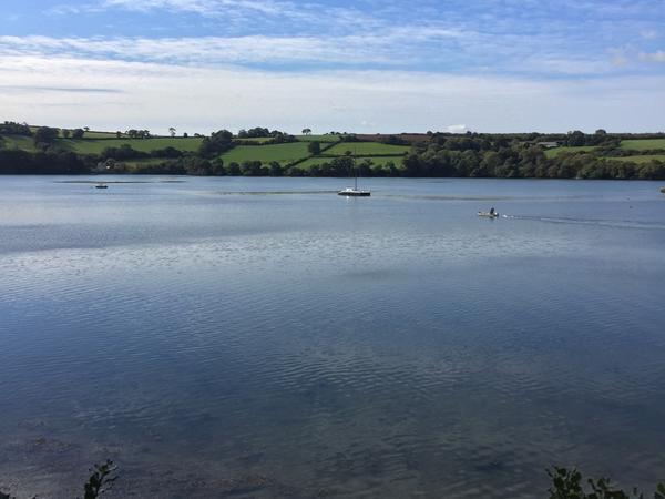 House and pet sitting on Restronguet Creek in Feock nr Truro, Cornwall