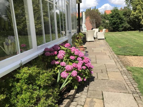 Housesitting assignment in East Dereham, United Kingdom