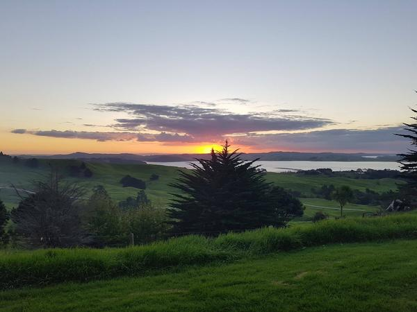 Housesitting assignment in Wellsford, New Zealand