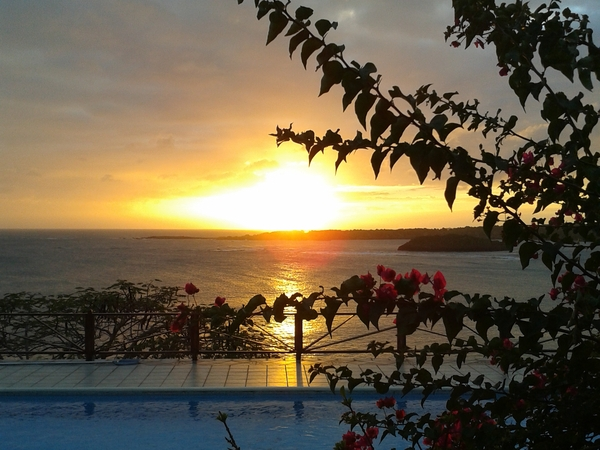 Dog & House Sitter needed in Grenada, West Indies, for June & July 2015